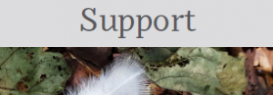 Wishsticks Reflection Card - Support
